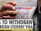 新冠病毒 + 簽證政策 來美國際學生銳減